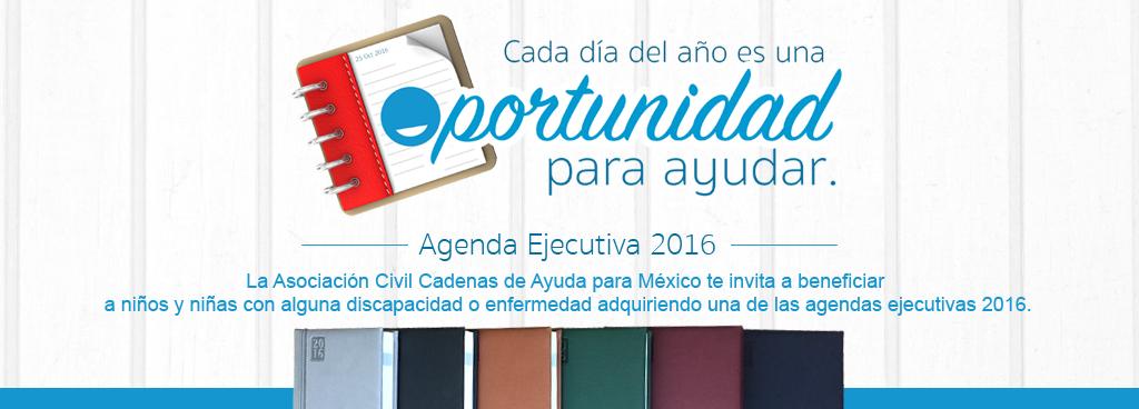agendas2016-banner-web